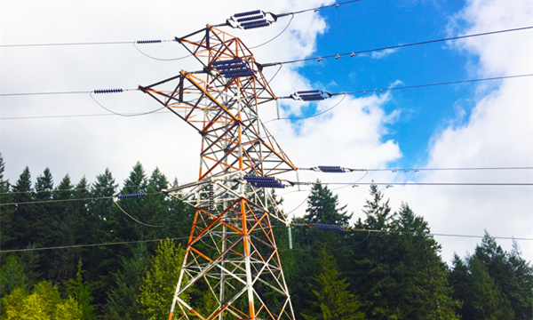 Electric power—Transmission & Distribution lines surveillance